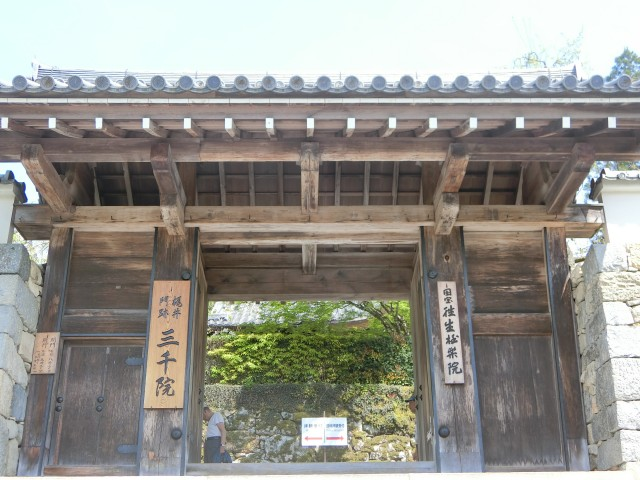 Oohara-1
