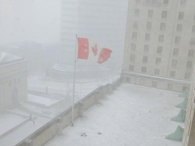 Last Toronto-7